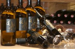 Exclusive wines from our wine cellar